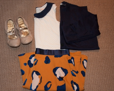 Phillip Lim Target Skirt and Collared Shirt