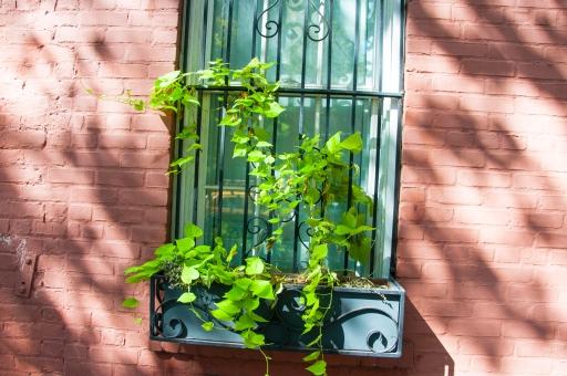 NYC Window Box