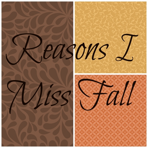 Reasons I Miss Fall